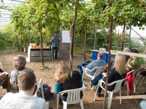 Llewellyns Orchard Cider Making Class