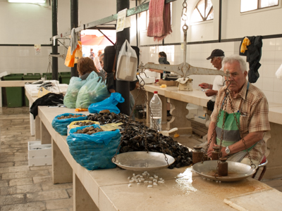 Mollusks and More at Split's Fish Market